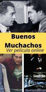 Buenos Muchachos ver película online