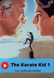 The Karate Kid 1 ver película online
