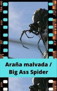 Araña malvada / Big Ass Spider ver película online