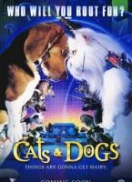 Como perros y gatos 2