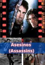 Asesinos 1995 ver película online