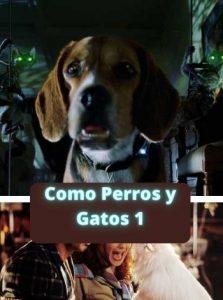 Como Perros y Gatos 1 ver película online