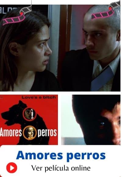 Ver Amores Perros Pelicula Online Gratis En Hd Maxcine