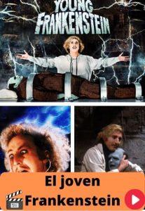El joven Frankenstein ver película online