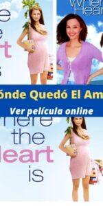 ¿Dónde Quedó El Amor? ver película online
