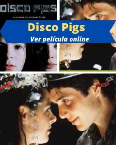 Disco Pigs ver película online
