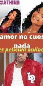 El amor no cuesta nada ver película online